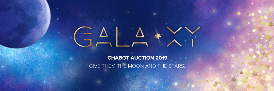 Chabot Auction 2017