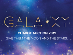 Donations for the March Chabot GALA-XY Auction