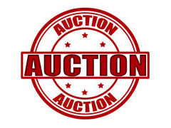 Seeking Auction Donations – Deadline is February 5